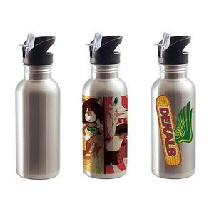 20 oz. Stainless Steel Straw Top Water Bottle
